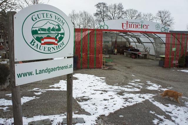 Landgärtnerei Ehmeier (c) Stern&Kringel