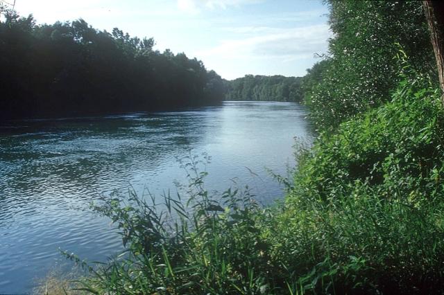 Naturschutzgebiet Traunauen (c) Stern&Kringel